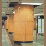 Покрынная эмалью алюминиевая панель для украшения стены станции метро