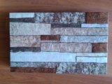 3D Tegels van de Muur van Inkjet