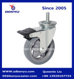 Stamm Swivel Caster mit 5 Inch Poly Wheel in Grey Color