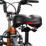 Samsungのリチウム48Vが付いている電気自転車を折る新しい250W Foldable Eのバイク