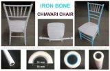 Popular banquete de bodas de oro de muebles de resina de polipropileno silla Chiavari con núcleo de metal