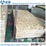 1220*2440 Oriented Strand Board/OSB de Shandong
