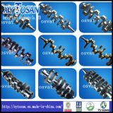Cigüeñal de fundición de hierro y acero forjado (todos los modelos)