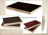 Konstruieren-Furnierholz/Marinefurnierholz/Film stellten Furnierholz/Baumaterialien für Aufbau gegenüber