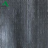 Tessuto del coperchio al suolo del giardino/controllo della stuoia/plastica pp anti Weed agro Weed barriera del Weed