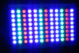 Dali DMX PWM Dimmable 600W RGB Leistungs-Flut-Licht