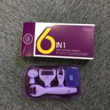 """ 6 in 1 "" micro rullo di Derma dell'ago per il fronte Using"