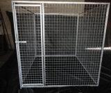 Quadratische Maschendraht-Hundehundehütte des Gefäß-25X25mm im Freien große geschweißte