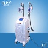 Material ABS Cryolipolysis belleza RF cavitación Aparato para la pérdida de peso adelgaza