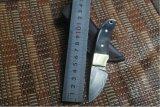 角のハンドルのハンドメイドのポケット・ナイフが付いている小型ダマスカス鋼鉄ナイフ