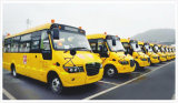 lumière électrique de camions de balise Emergency ambre de signal d'échantillonnage de 12-Volt DEL