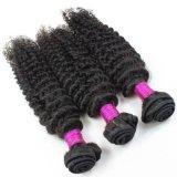 バージンのブラジルの毛はボディ波の毛のよこ糸を編む