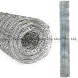Engranzamento de fio soldado do aço inoxidável 304 da venda por atacado 1.22X30m de China