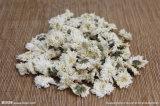 Flores del crisantemo