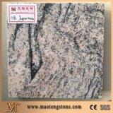 Revêtement Polished de mur extérieur de granit de la couleur G603 gris-clair