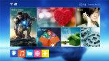 Del Android 6.0 TV della parte superiore PRO S905 Kodi Amlogic S905 casella stabilita di memoria TV del quadrato di Mxq