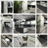 N&L le métal en acier inoxydable 304 barbecue des armoires de cuisine de plein air