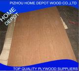 1220x2440x18mm madera contrachapada con Gond Gond Precio y Calidad de China