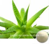 Hot Sale Aloin a + B 20% -98% Extracto natural de Aloe Vera / Aloe-Emodin