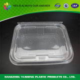 Envase de alimento plástico rectangular, envase claro disponible