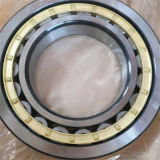 Nu224 SKF/NTN/NSK/NACHI/China Peilungen des Fabrik-zylinderförmige Rollenlager-SKF