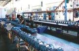 160 W de soplado de aire del ventilador de aire bomba de vacío del ventilador de canal lateral de la bomba de gas Vortex