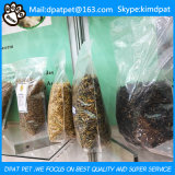 Larva de farinha da micrôonda da fonte da fábrica