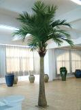 Palma artificiale all'ingrosso fatta in Cina per la decorazione della casa del giardino
