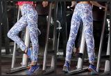 Pantaloni elastici molli antibatterici variopinti di yoga del cinturino di forma fisica delle ghette delle donne
