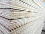 madera contrachapada resistente al fuego incombustible del Anti-Fuego HPL de 18m m