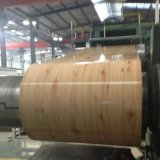 Vorgestrichene Buiding materielle Stahlprodukte galvanisierten Galvalume PPGI
