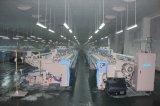 Telaio senza navetta della ratiera del telaio per tessitura del Aria-Getto dello Zax 9100 di Tsudakoma