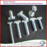 StoßzeitEdelstahl-Hammer-Kopf schmiedete T-Bolzen