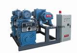 Sistema de bombas do pistão da metalurgia do vácuo