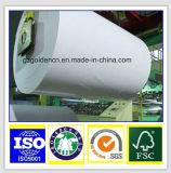 lustre ou matte de papier d'art de 115GSM C2s