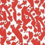 Пленки печатание перехода воды пленки PVA конструкций шаржа картин Tsautop популярная продавая 1m/0.5m пленка P227 печатание красивейшей гидрографической гидро