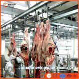 De Lijn van de Slachting van de Os en van de Geit van Halal voor het Slachthuis van het Slachthuis