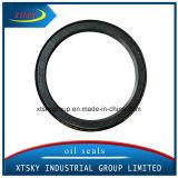Haute qualité et la compétitivité des prix joint Xtsky Vg1246010005 dans