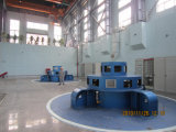 Turbine de Kaplan/turbine hydraulique/turbine de l'eau pour le pouvoir hydraulique