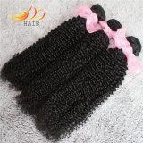 ねじれたカール8Aのマレーシアのバージンの人間の毛髪自然なカラー毛の織り方
