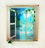 Hochwertige Heiß-Verkaufende manuelle Aluminiumfenster-Farbton-Rollen-Vorhänge