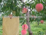 Frucht-wachsende Papiertüten für Pfirsich