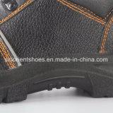 Sapatas de segurança de aço Snb1914 do dedo do pé