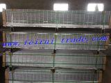 La haute sécurité 358 Chaud-A plongé la clôture galvanisée