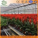 Serre chaude de film plastique de Multispan pour l'horticulture de fleur de concombre de tomate