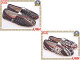 Chaussures de toile de Mens (SD6199)