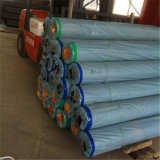 Alfombra del suelo del PVC del grueso de 0.55mm
