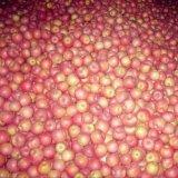 신선한 빨간 Qinguan Apple의 정규 공급자