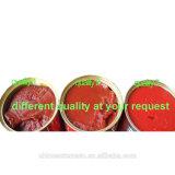 Haute Qualité Pâte de tomate en conserve avec toutes les tailles