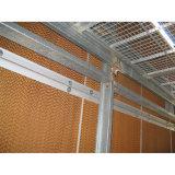 Garniture de refroidissement de rideau humide pour la serre chaude de ferme avicole